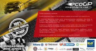 A Goodyear megújulva,az ECO GP hivatalos abroncsszponzoraként tér vissza a versenypályára, aholmár a Goodyear új fejlesztésű Eagle F1 Supersport abroncsai is szerepet kapnak. A vezető gumigyártó cég megújult imázsában kiemelten fontos szerepet kap az elektromobilitás, ezért állt a Magyarországon még csak most debütáló, száz százalékban elektromos autóverseny mellé. A Goodyear versenybokszábankerékcsere verseny, szakmai előadások és Kiss Norbert kétszeres Európa-bajnok kamionversenyző vezetéstechnikai workshopja várja az érdeklődőket.