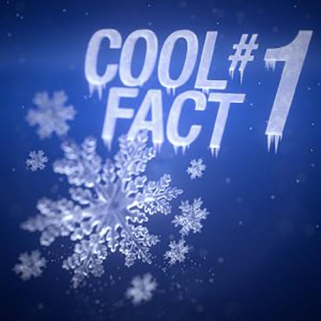 A hó egy csoda Minden hópehely egy kis csoda, amely milliárdnyi jégkristályból álló, egyedülálló képződmény. És mégis minden pehelynek van egy közös vonása: a hat sarok, pontosabban a hatágú szimmetria. Miért? A vízmolekulák mindig 60 vagy 120 fokos szögben helyezkednek el.