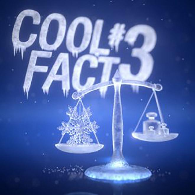 A hó megváltoztatja a tömegét Míg a száraz porhó tömege 30 kg/m³, a letaposott régi hó pedig elérheti az 500 kg/m³ tömeget, a csonthó akár 800 kg/m³ is lehet.
