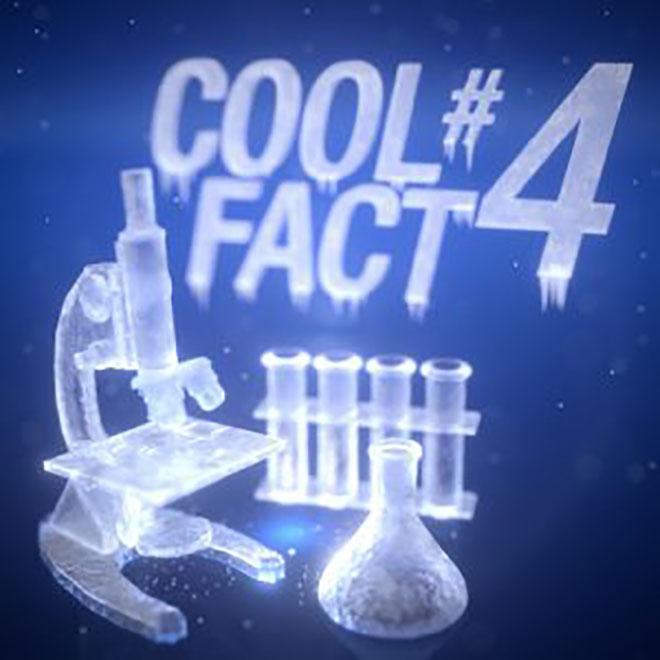 A hó átalakul A hó valójában folyamatosan változik, mivel a hókristályok a kapcsolódási pontjaikon együtt nőnek. Ezt a fizikai folyamatot szinterezésnek nevezzük.