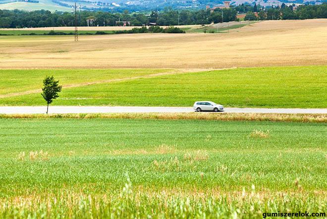 A fenntartható jövő érdekében és környezettudatos szemléletben zöldül az autóipar is: a gyártók a környezetbarát megoldásokra törekednek.